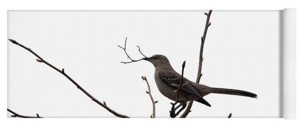 Mockingbird With Twig Yoga Mat