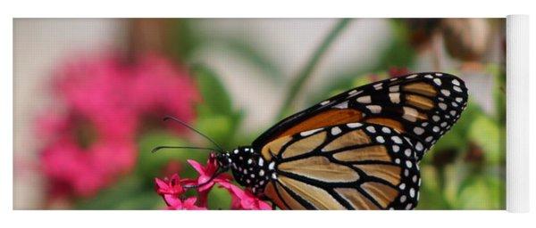 Monarch Butterfly On Fuchsia Yoga Mat