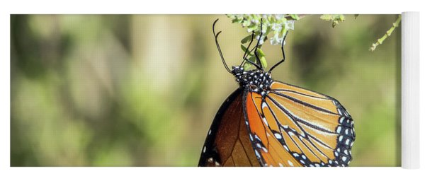 Monarch Butterfly 7504-101017-2cr Yoga Mat