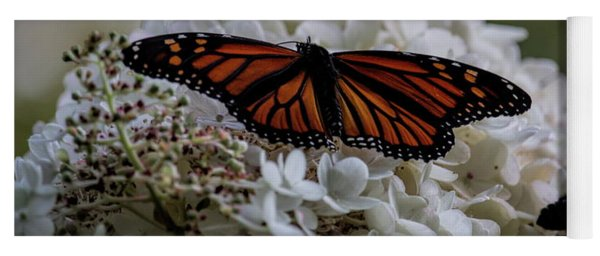 Monarch Butterfly Feeding On Hydrangea Tree Yoga Mat