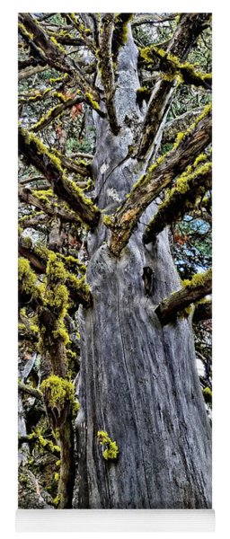 Monster Tree Yoga Mat