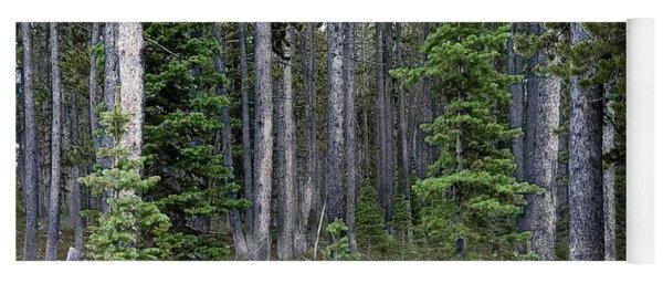 Montana Forest Yoga Mat