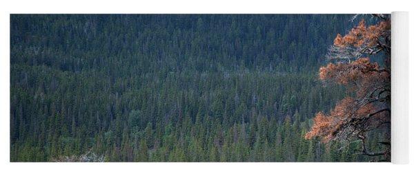 Montana Tree Line Yoga Mat