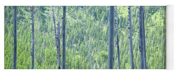 Montana Trees Yoga Mat