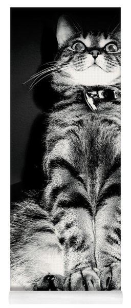 Monty Our Precious Cat Yoga Mat