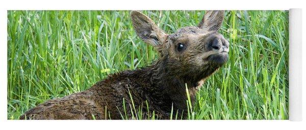 Moose Baby Yoga Mat