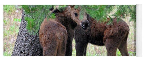 Moose Calves Yoga Mat