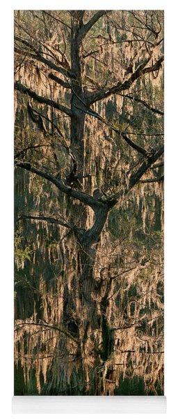 Moss Draped Cypress Caddo Lake Texa Yoga Mat