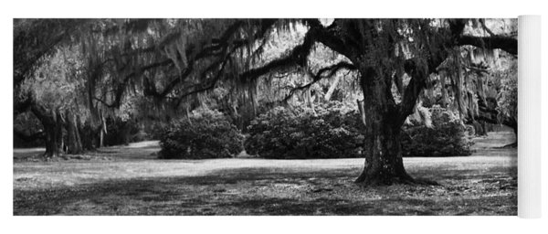 Moss Trees Black And White Yoga Mat
