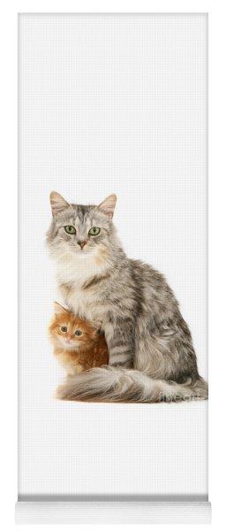 Mother Cat And Ginger Kitten Yoga Mat