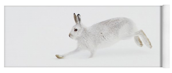 Mountain Hare Running Yoga Mat