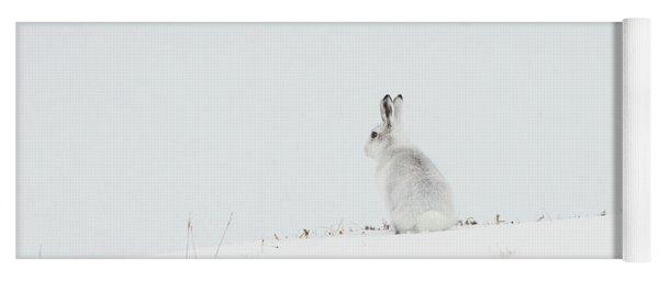 Mountain Hare Sat In Snow Yoga Mat