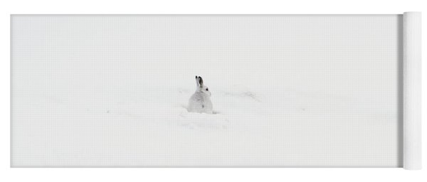 Mountain Hare Small In Frame Left Yoga Mat