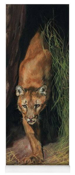 Mountain Lion Emerging From Shadows Yoga Mat