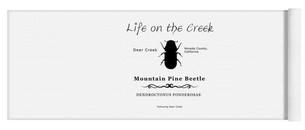 Mountain Pine Beetle Black On White Yoga Mat