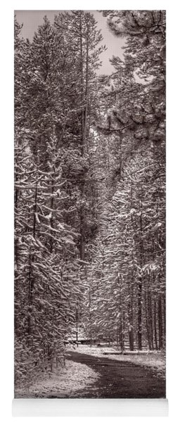 Mountain Trail Yellowstone Bw Yoga Mat