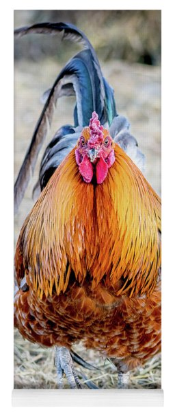 Mr. Rooster Yoga Mat
