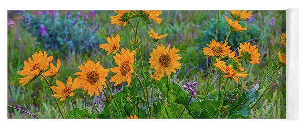 Mule's Ear And Lupine Yoga Mat