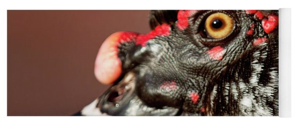 Yoga Mat featuring the photograph Muscovy by Sue Collura