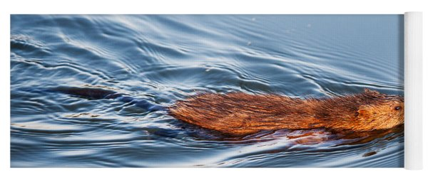 Muskrat Speed Swiming Yoga Mat