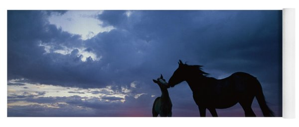 Mustang And Foal At Sunset Yoga Mat