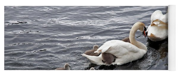 Mute Swans Yoga Mat