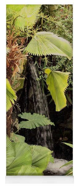 Myriad Botanical Gardens Waterfall Yoga Mat