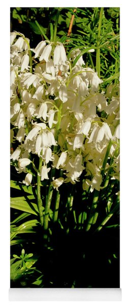 Native White Bluebells. Late Spring. Yoga Mat