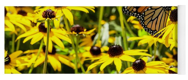 Monarch Butterfly On Yellow Flowers Yoga Mat