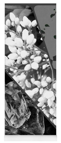 Nature Collage In Black And White Yoga Mat