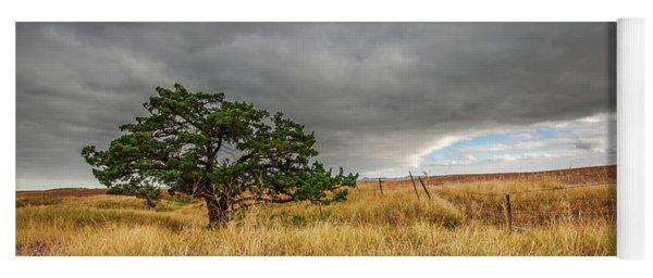 Nature - Lone Tree In South Dakota Badlands Yoga Mat