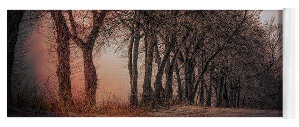 Nature Winter Bare Trees Color  Yoga Mat