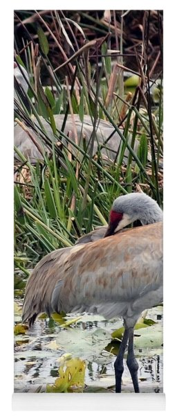 Nesting Sandhill Crane Pair Yoga Mat