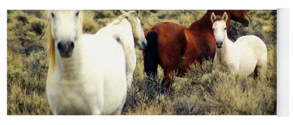 Nevada Wild Horses Yoga Mat