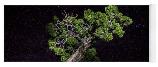 Yoga Mat featuring the photograph Night Tree by T Brian Jones