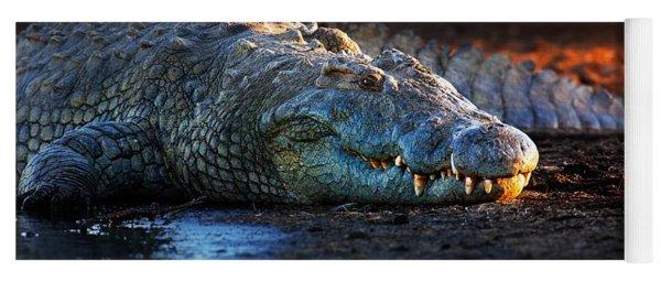 Nile Crocodile On Riverbank-1 Yoga Mat