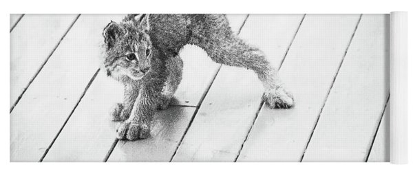 Ninja Lynx Kitty Bw Yoga Mat