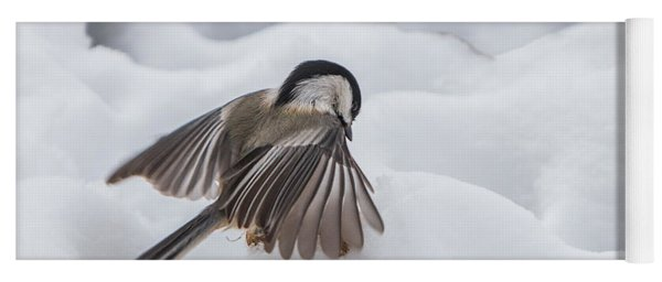 Yoga Mat featuring the photograph Chickadee - Wings At Work by Patti Deters