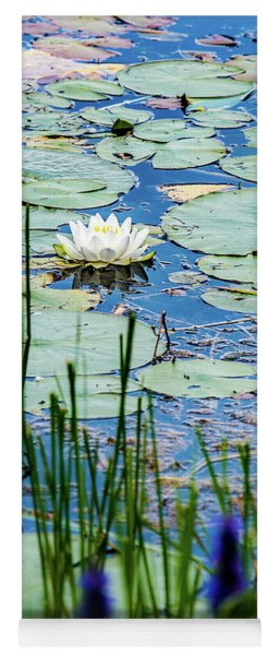 North American White Water Lily Yoga Mat