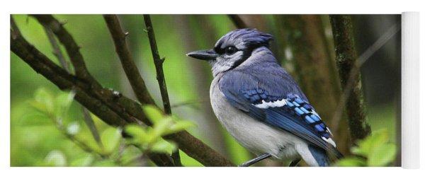 Northern Blue Jay Yoga Mat