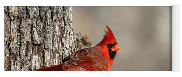 Northern Cardinal On Tree Yoga Mat