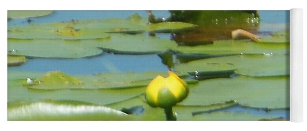 Nuphar Lutea Yellow Pond Yoga Mat