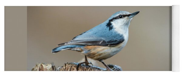 Nuthatch's Pose Yoga Mat