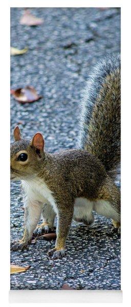 Nuts Yoga Mat