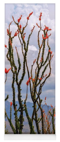 Ocotillo Blooming Under Cloudy Skies Yoga Mat