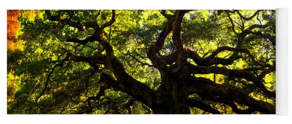 Old Old Angel Oak In Charleston Yoga Mat