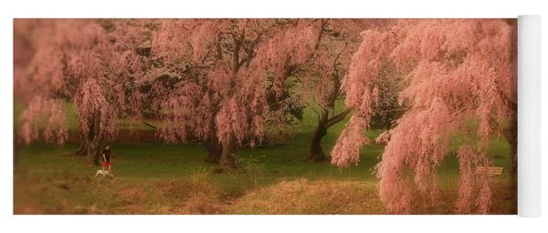 Yoga Mat featuring the photograph One Spring Day - Holmdel Park by Angie Tirado