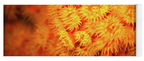 Orange Anemones Yoga Mat