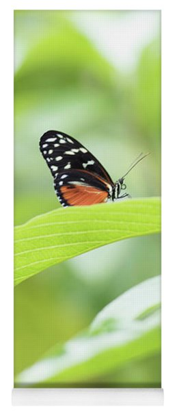 Yoga Mat featuring the photograph Orange Black Butterfly by Raphael Lopez