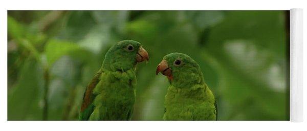 Orange-chinned Parakeets-  Yoga Mat
